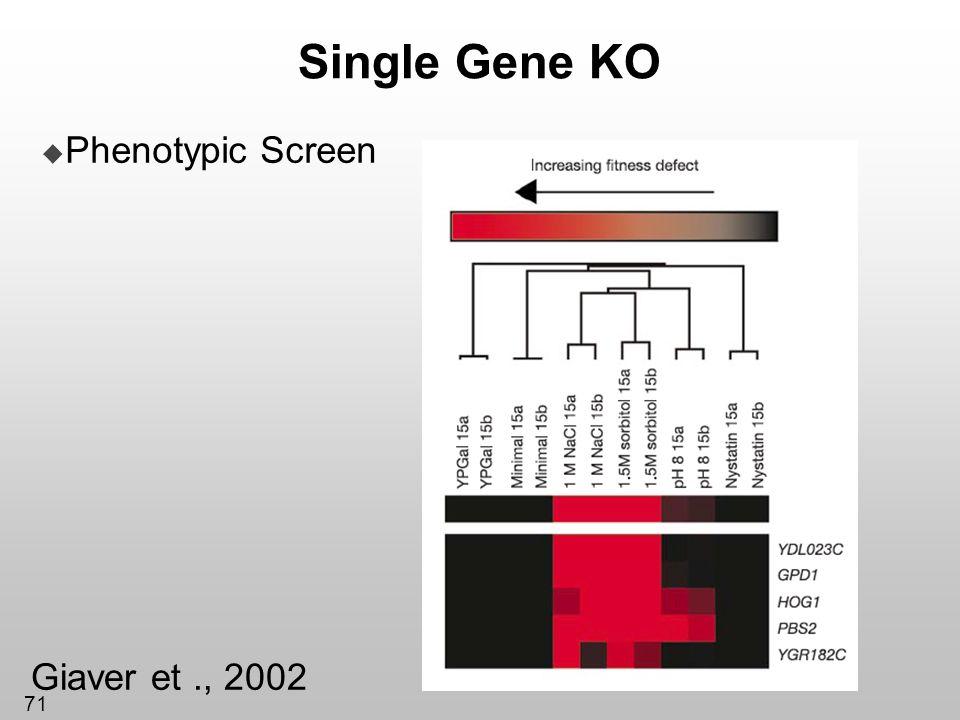 71 Single Gene KO Phenotypic Screen Giaver et., 2002