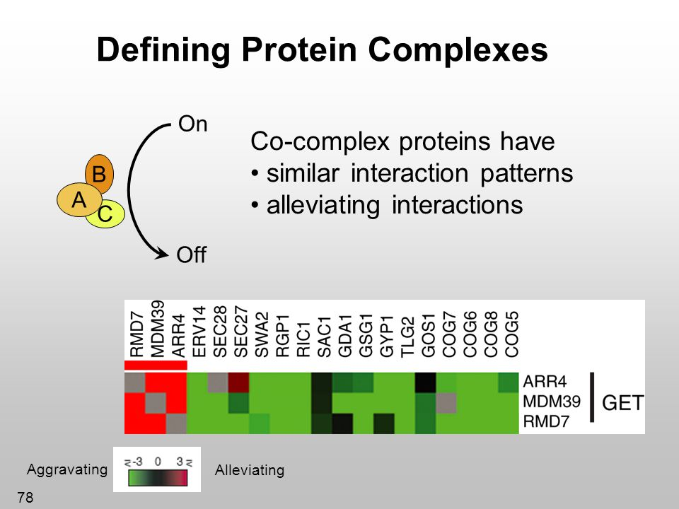78 Defining Protein Complexes On Off B C A Co-complex proteins have similar interaction patterns alleviating interactions Aggravating Alleviating