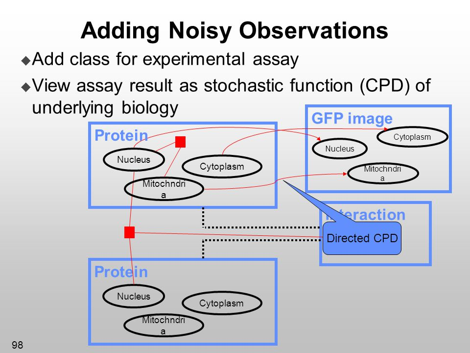 98 Add class for experimental assay View assay result as stochastic function (CPD) of underlying biology Adding Noisy Observations GFP image Cytoplasm