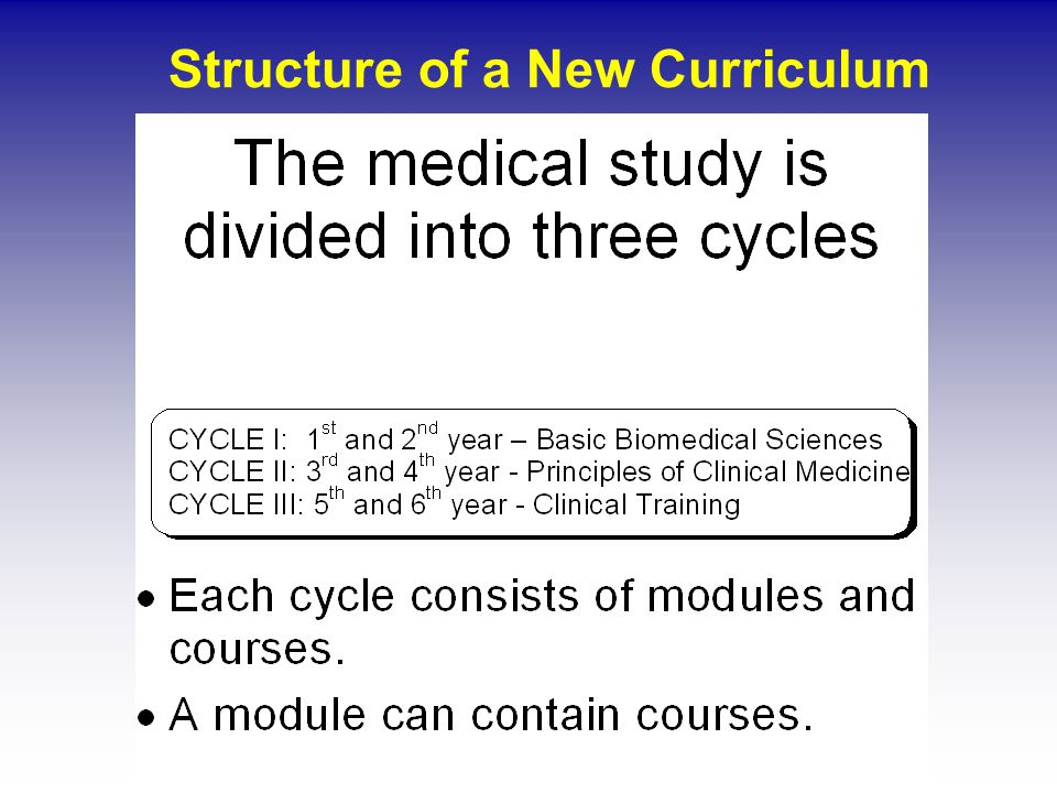 Structure of a New Curriculum