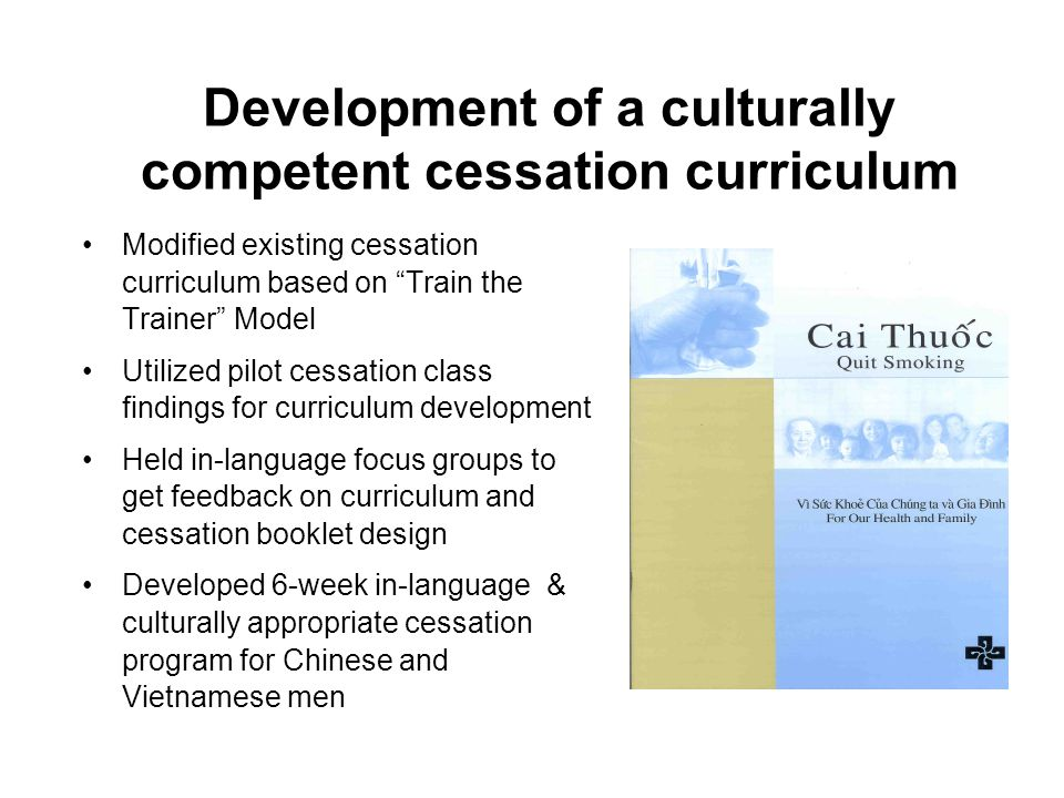 Modified existing cessation curriculum based on Train the Trainer Model Utilized pilot cessation class findings for curriculum development Held in-language focus groups to get feedback on curriculum and cessation booklet design Developed 6-week in-language & culturally appropriate cessation program for Chinese and Vietnamese men Development of a culturally competent cessation curriculum