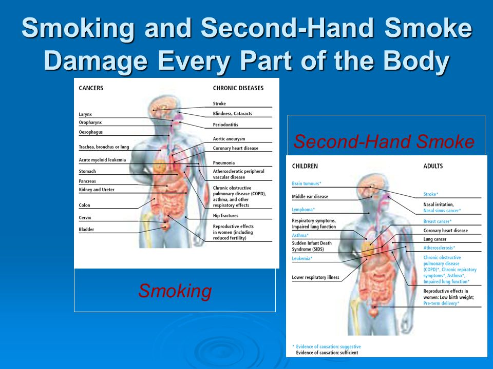 Smoking and Second-Hand Smoke Damage Every Part of the Body Smoking Second-Hand Smoke