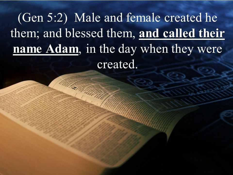 and called their name Adam (Gen 5:2) Male and female created he them; and blessed them, and called their name Adam, in the day when they were created.