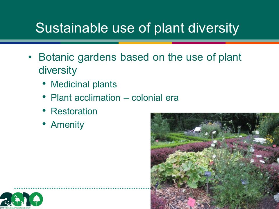 Sustainable use of plant diversity Botanic gardens based on the use of plant diversity Medicinal plants Plant acclimation – colonial era Restoration Amenity