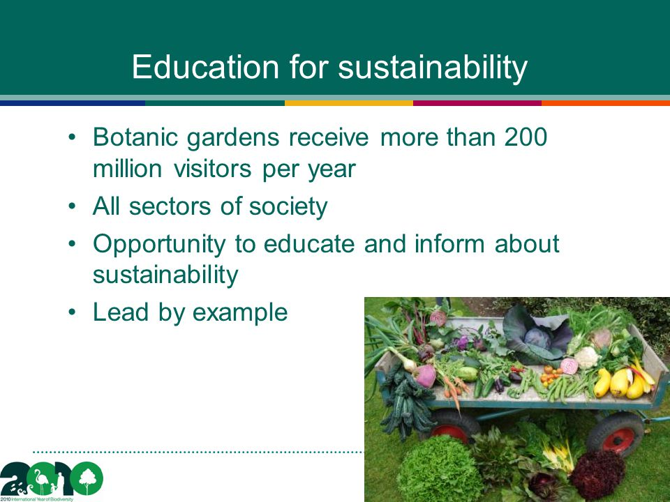 Education for sustainability Botanic gardens receive more than 200 million visitors per year All sectors of society Opportunity to educate and inform about sustainability Lead by example