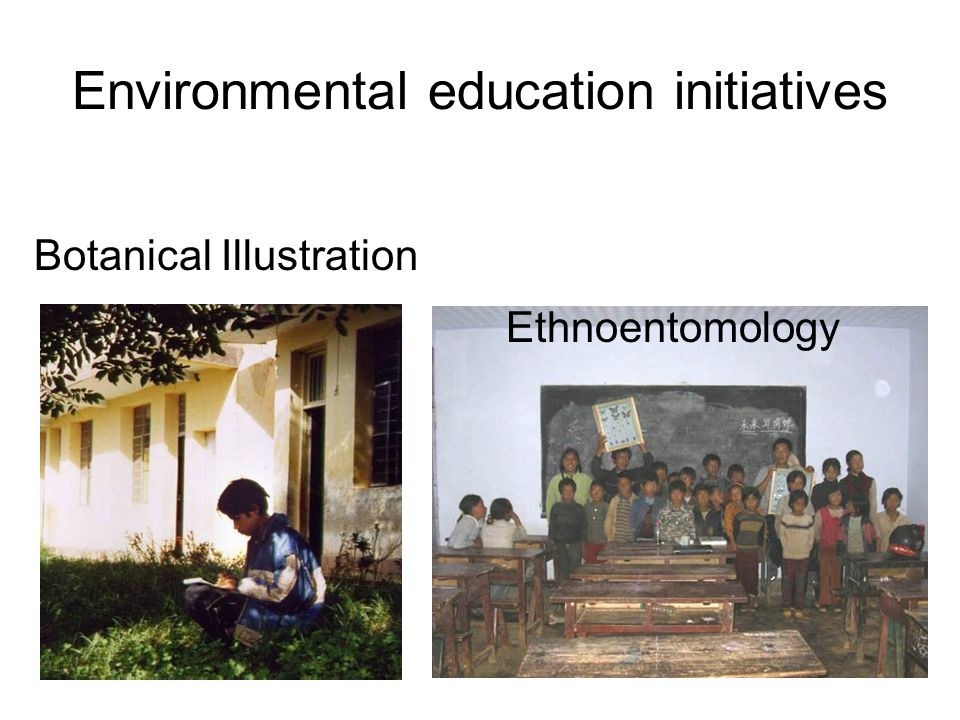 Environmental education initiatives Botanical Illustration Ethnoentomology