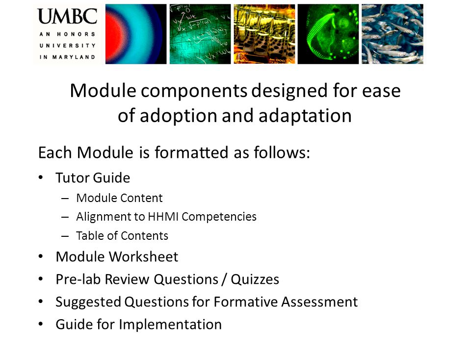 Module components designed for ease of adoption and adaptation Tutor Guide – Module Content – Alignment to HHMI Competencies – Table of Contents Module Worksheet Pre-lab Review Questions / Quizzes Suggested Questions for Formative Assessment Guide for Implementation Each Module is formatted as follows:
