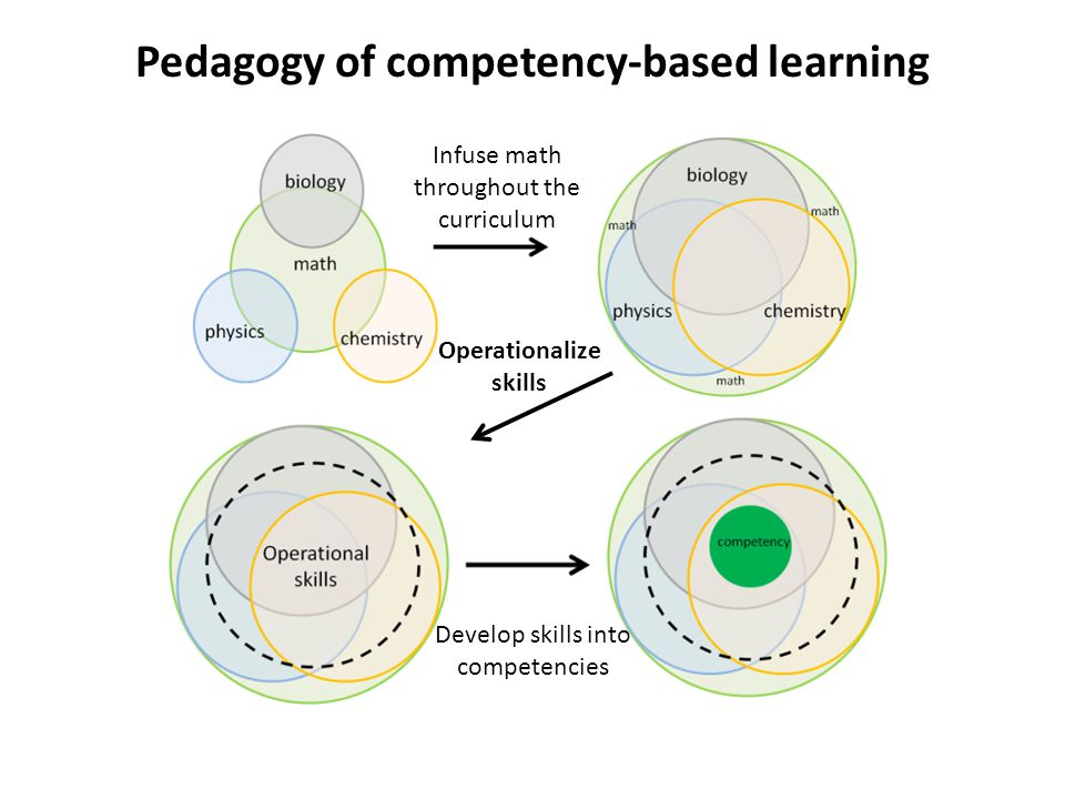 Pedagogy of competency-based learning Infuse math throughout the curriculum Operationalize skills Develop skills into competencies