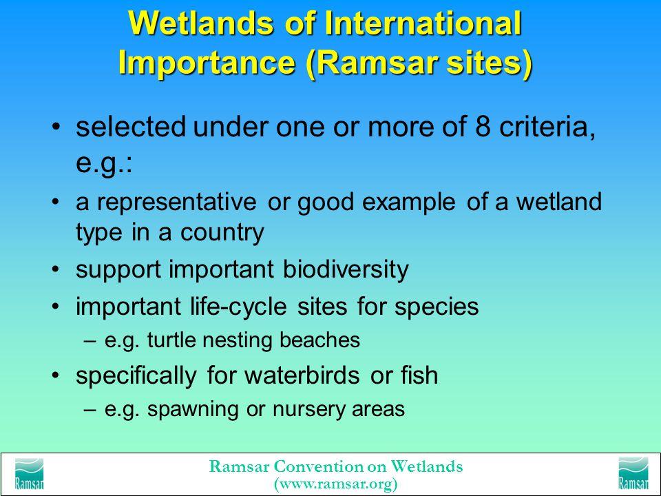 Ramsar Convention on Wetlands (www.ramsar.org) The Ramsar Convention today 1185 Wetlands of International Importance - Ramsar sites –1 million hectare