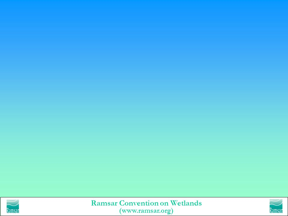 Ramsar Convention on Wetlands (www.ramsar.org) www.ramsar.org all you ever want to know about the Ramsar Convention - but didnt know who to ask…. –Wha