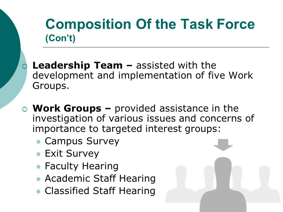 Composition Of the Task Force (Cont) Leadership Team – assisted with the development and implementation of five Work Groups.