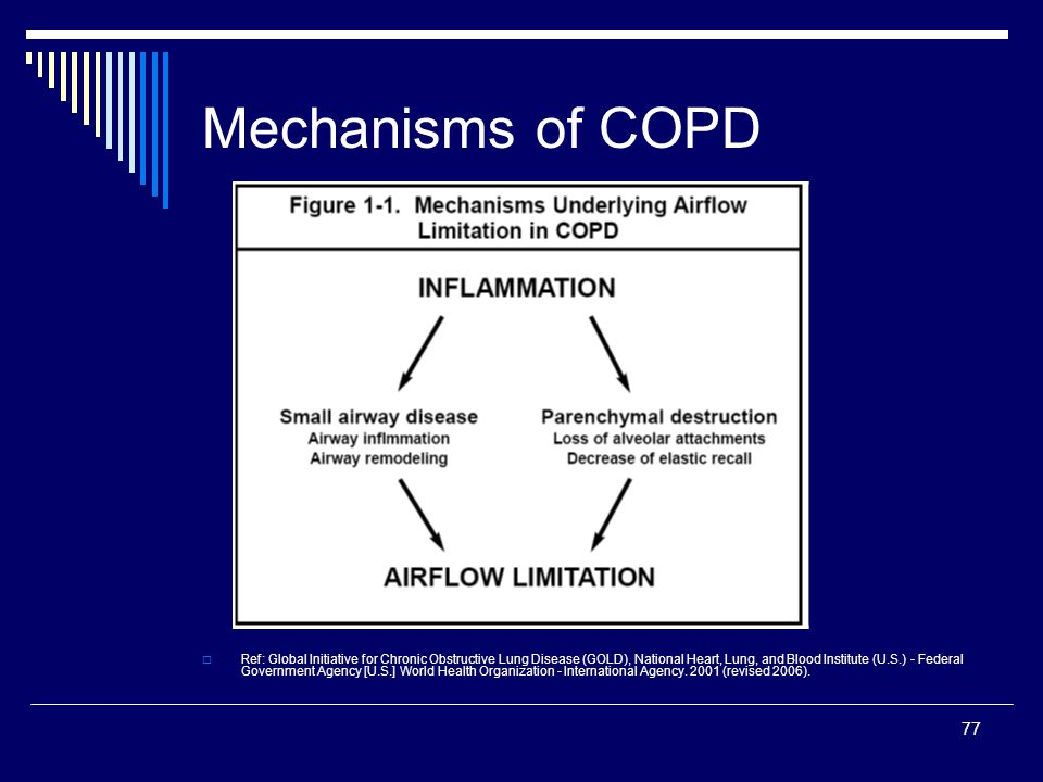 77 Mechanisms of COPD Ref: Global Initiative for Chronic Obstructive Lung Disease (GOLD), National Heart, Lung, and Blood Institute (U.S.) - Federal G