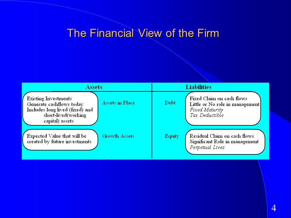 4 The Financial View of the Firm