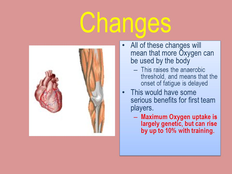 Myoglobin Myoglobin is the substance within the muscle that carries Oxygen to the Mitochondria – Aerobic training can increase myoglobin content by up