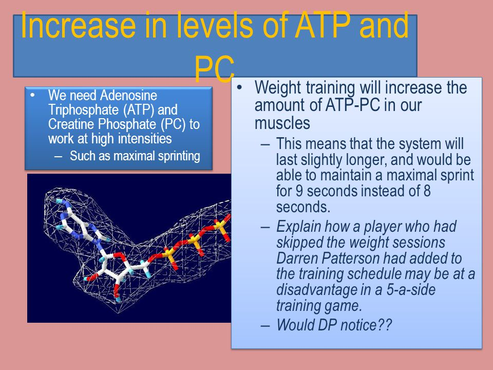 Hypertrophy hypertrophy Training at high intensity, such as weight training, will produce hypertrophy of fast twitch fibres – This means that the musc