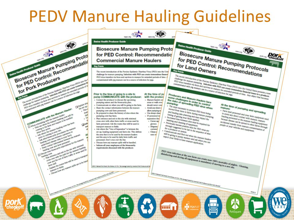 19 PED Transportation Guidelines