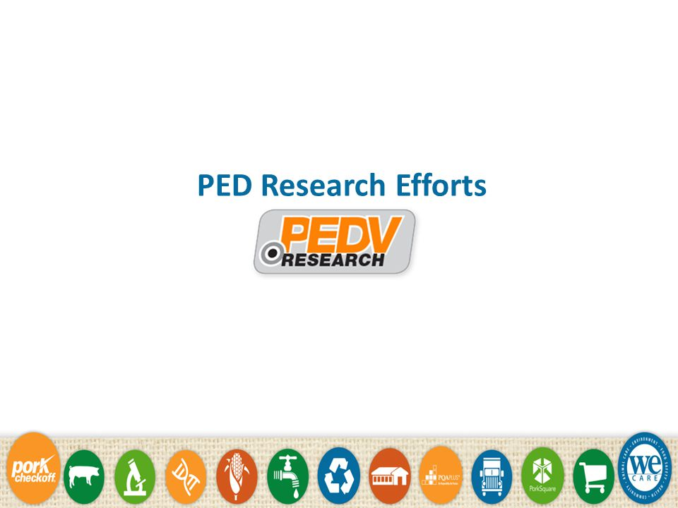 PED Research Efforts