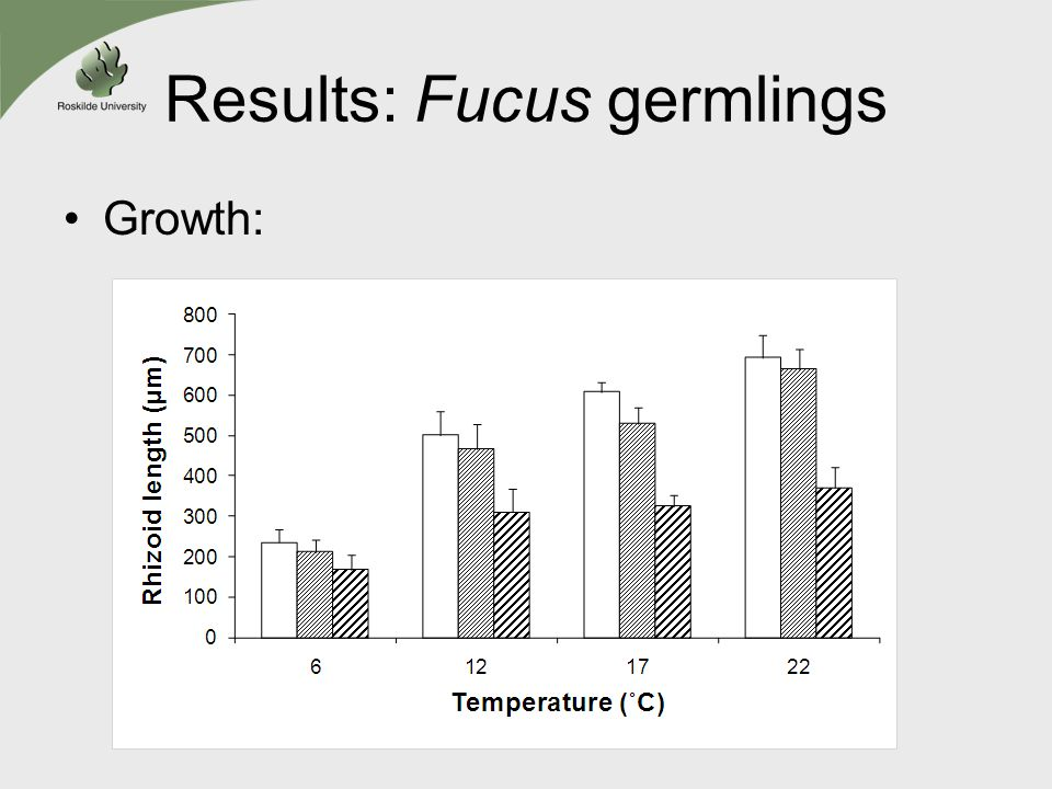 Results: Fucus germlings Growth: