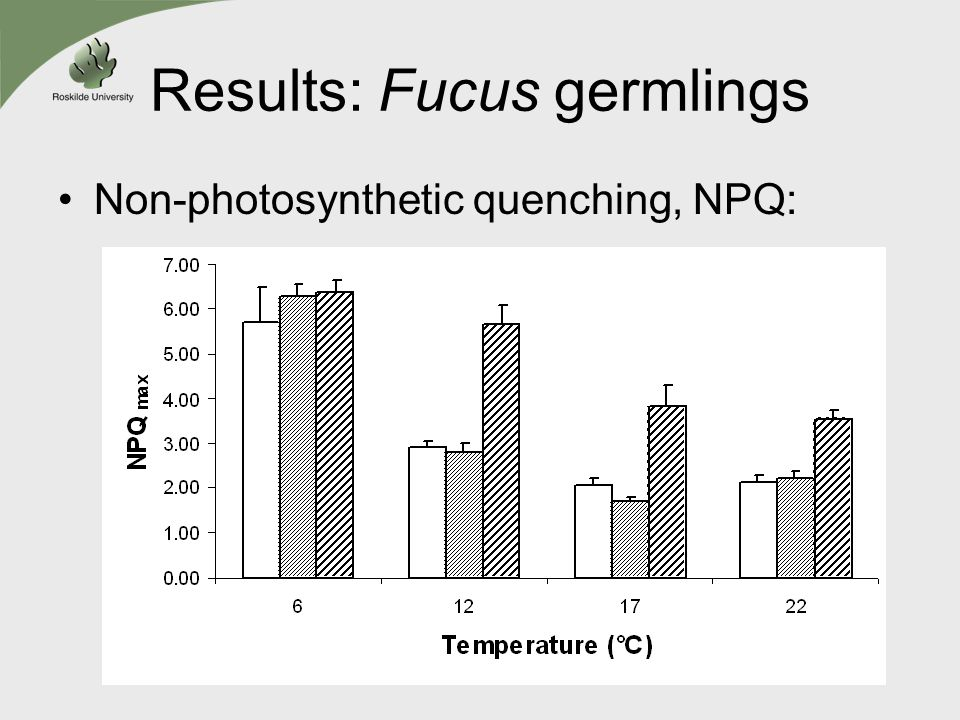 Results: Fucus germlings Non-photosynthetic quenching, NPQ: