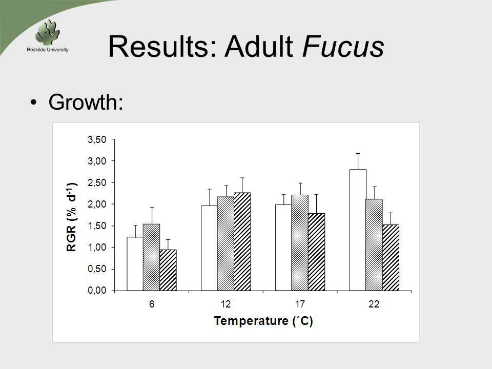 Results: Adult Fucus Growth: