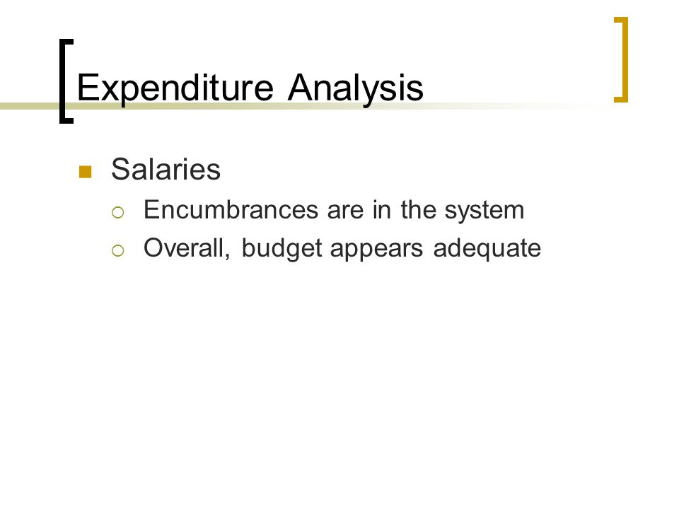 Expenditure Analysis Salaries Encumbrances are in the system Overall, budget appears adequate
