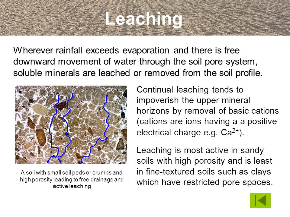Leaching Wherever rainfall exceeds evaporation and there is free downward movement of water through the soil pore system, soluble minerals are leached