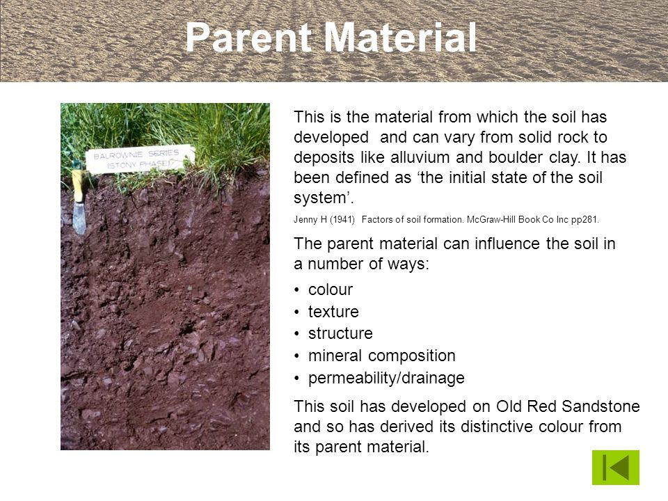 Parent Material This is the material from which the soil has developed and can vary from solid rock to deposits like alluvium and boulder clay. It has