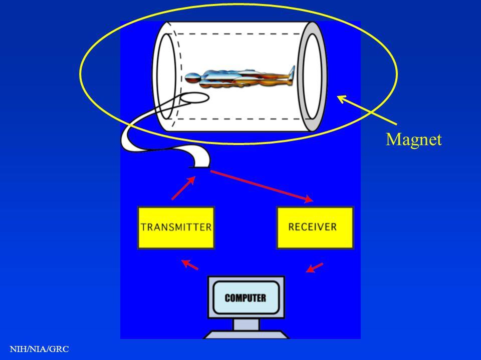NIH/NIA/GRC Magnet