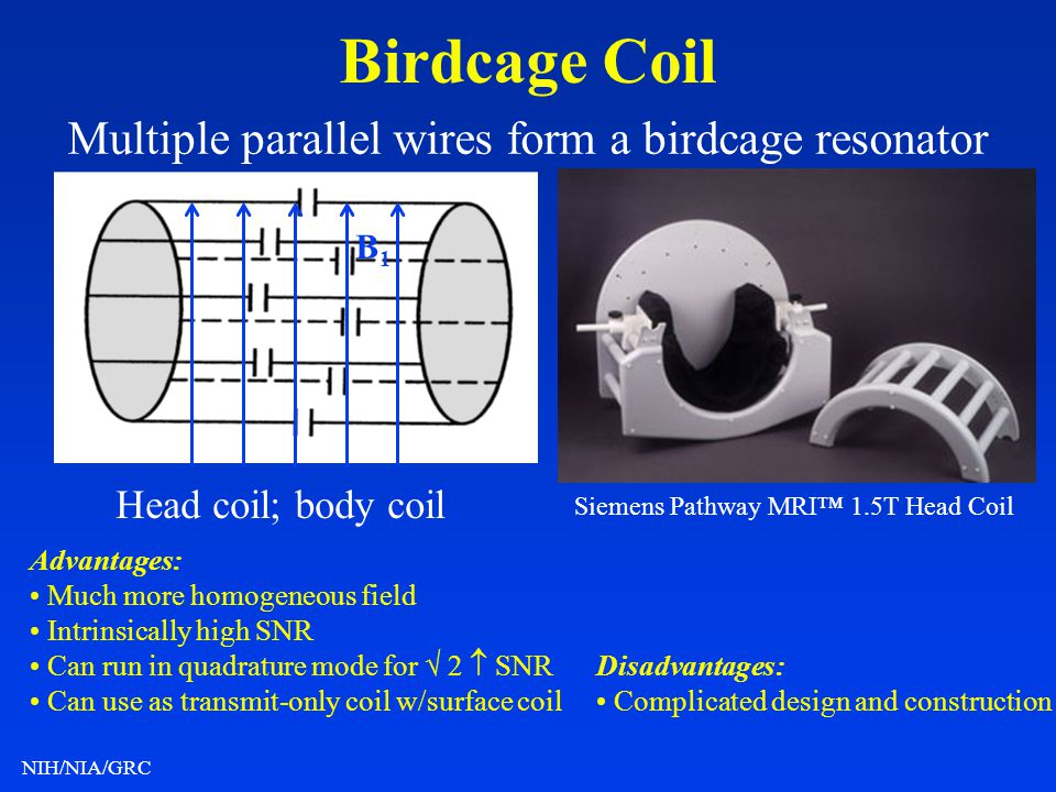 NIH/NIA/GRC Birdcage Coil Multiple parallel wires form a birdcage resonator Advantages: Much more homogeneous field Intrinsically high SNR Can run in