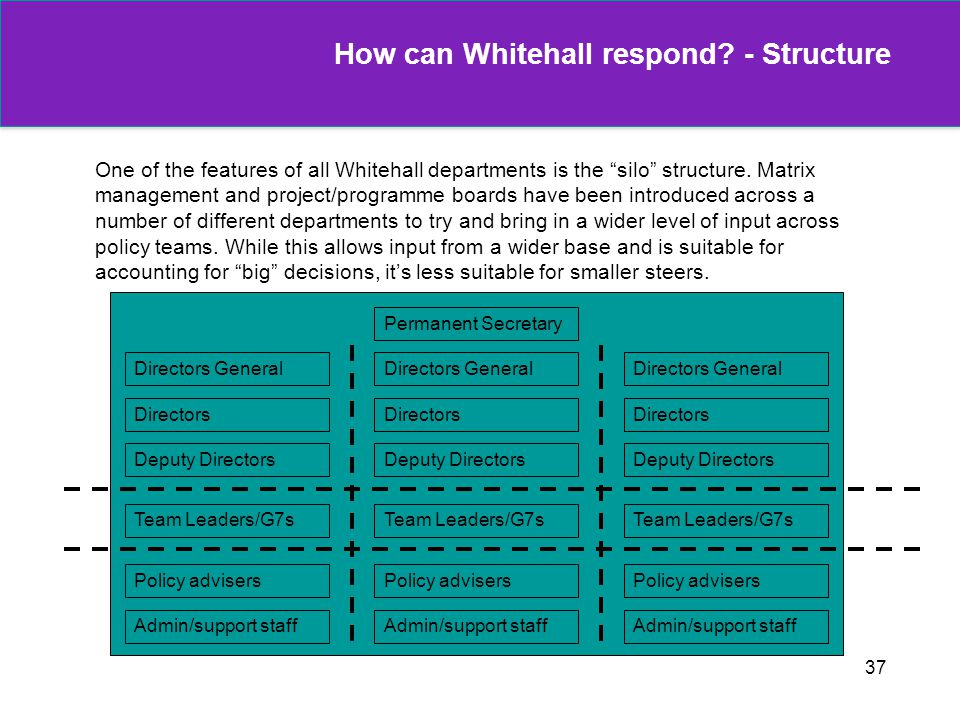 37 One of the features of all Whitehall departments is the silo structure. Matrix management and project/programme boards have been introduced across