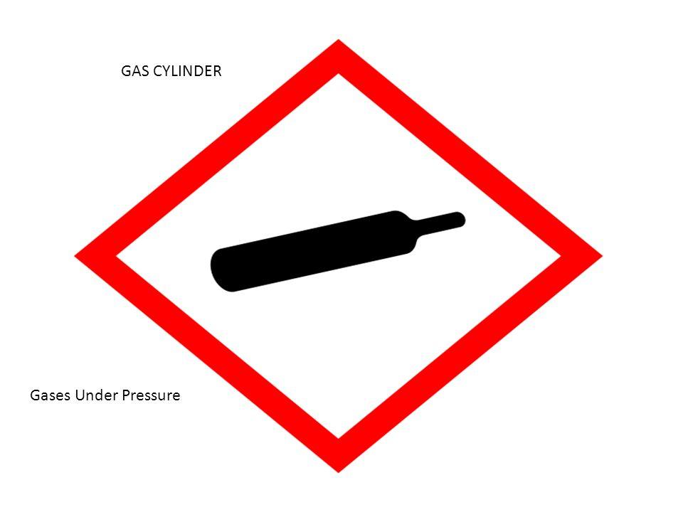 GAS CYLINDER Gases Under Pressure