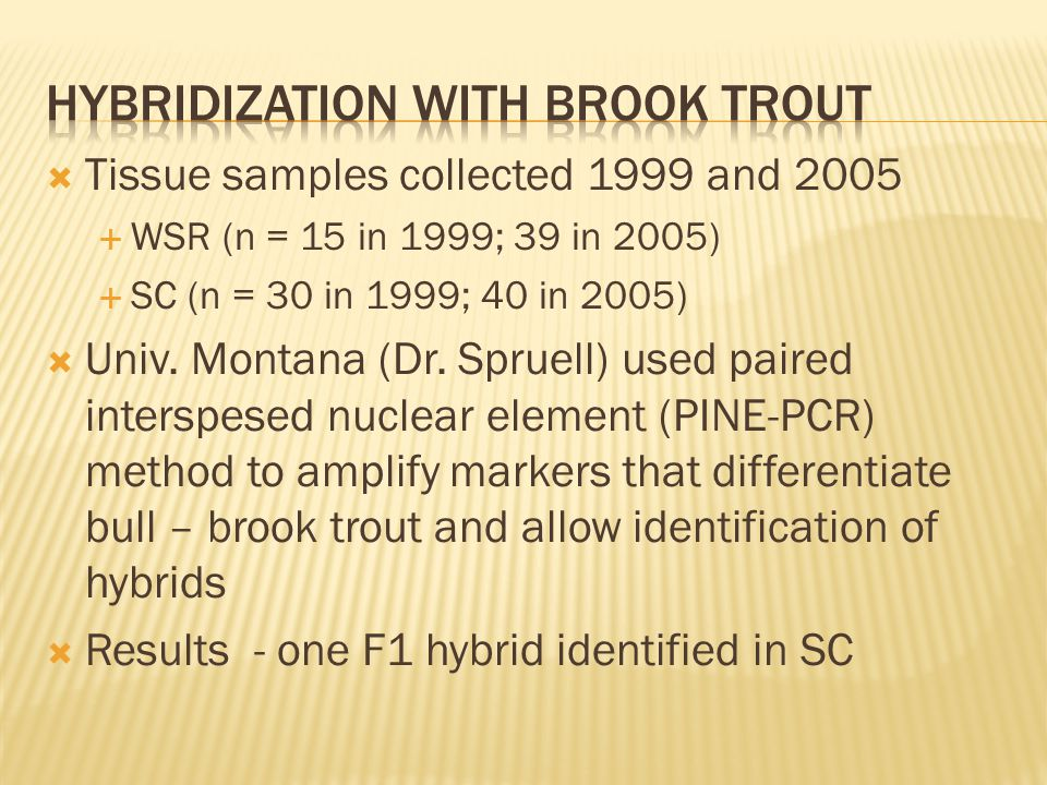 Tissue samples collected 1999 and 2005 WSR (n = 15 in 1999; 39 in 2005) SC (n = 30 in 1999; 40 in 2005) Univ.