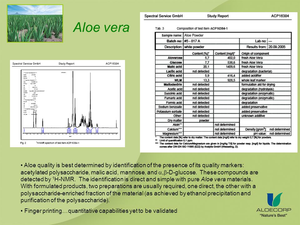 Aloe quality is best determined by identification of the presence of its quality markers: acetylated polysaccharide, malic acid, mannose, and -D-glucose.