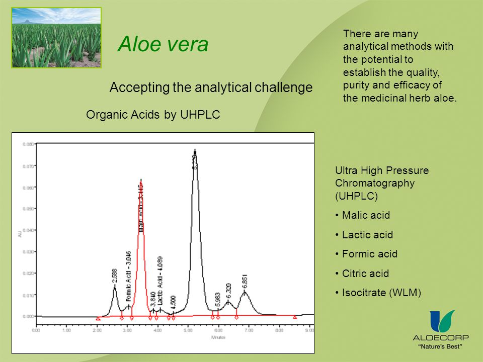 Aloe vera Accepting the analytical challenge Organic Acids by UHPLC Ultra High Pressure Chromatography (UHPLC) Malic acid Lactic acid Formic acid Citric acid Isocitrate (WLM) There are many analytical methods with the potential to establish the quality, purity and efficacy of the medicinal herb aloe.