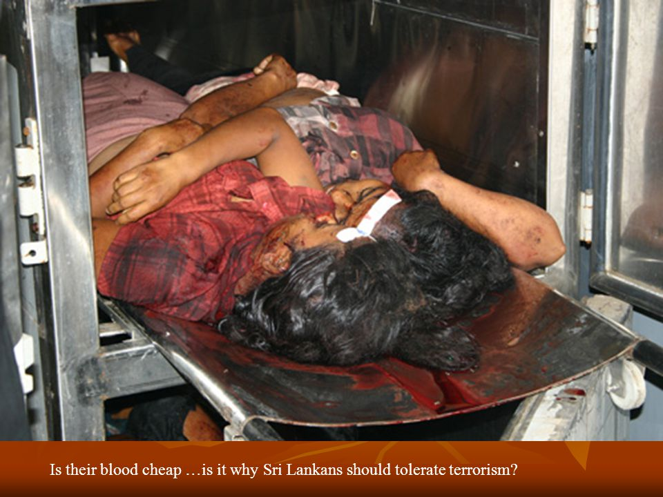Is their blood cheap …is it why Sri Lankans should tolerate terrorism?