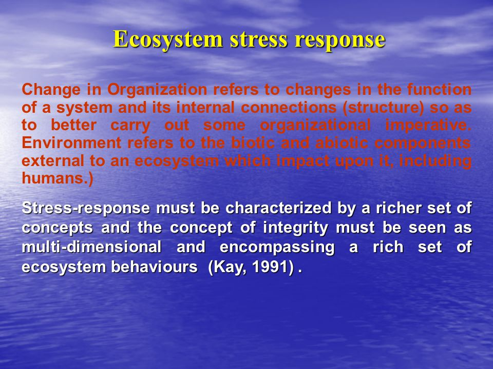 Change in Organization refers to changes in the function of a system and its internal connections (structure) so as to better carry out some organizational imperative.