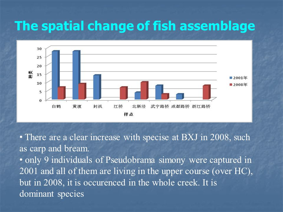 There are a clear increase with specise at BXJ in 2008, such as carp and bream. only 9 individuals of Pseudobrama simony were captured in 2001 and all