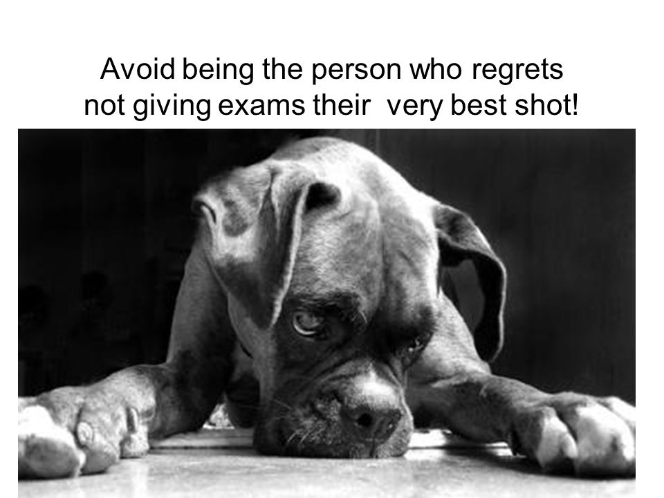 Avoid being the person who regrets not giving exams their very best shot!