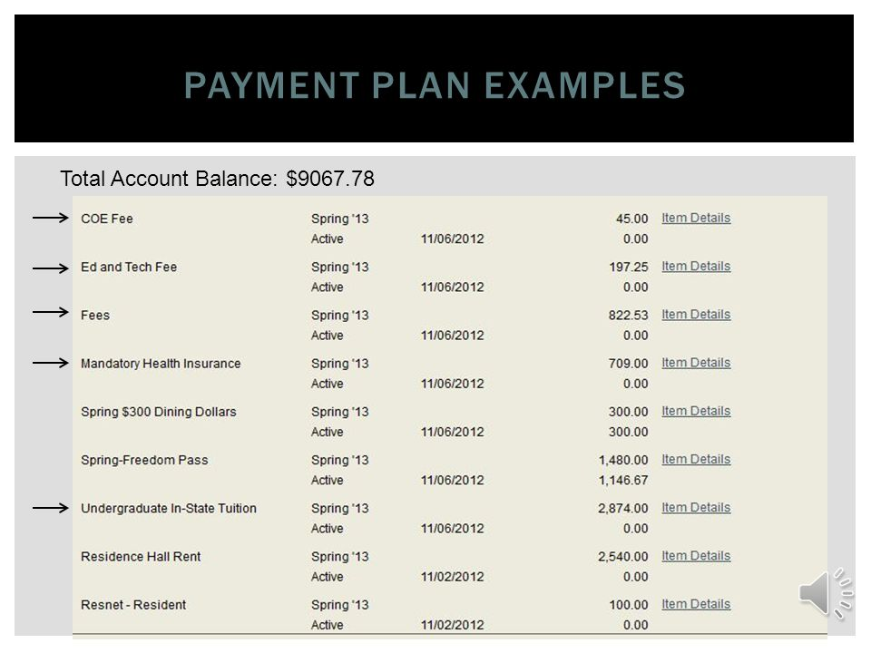 PAYMENT PLAN EXAMPLES Total Account Balance: 3893.78