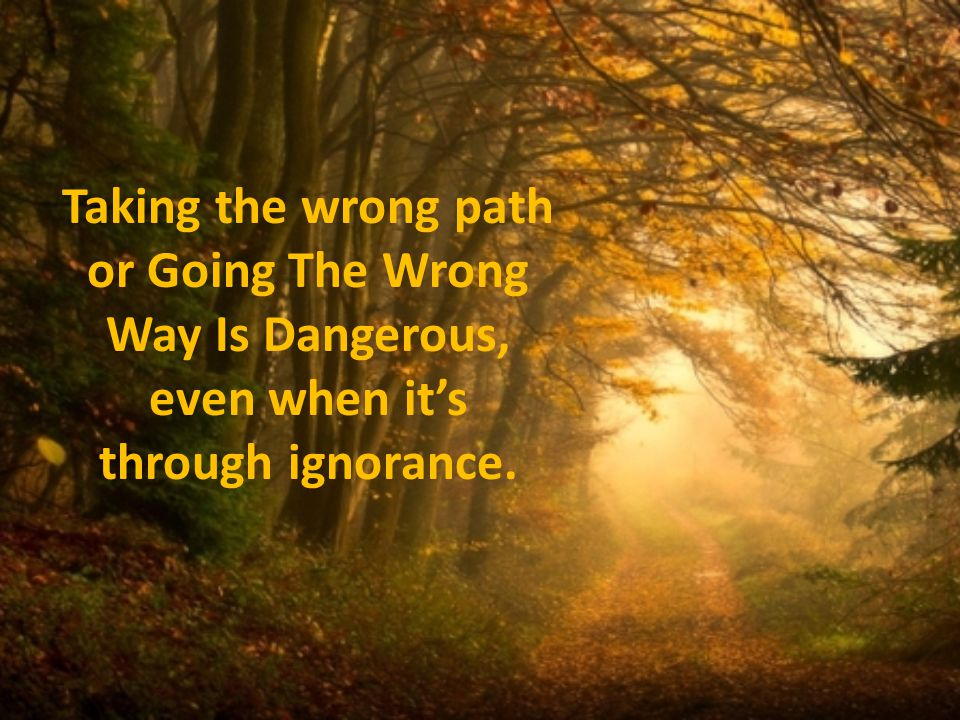Taking the wrong path or Going The Wrong Way Is Dangerous, even when its through ignorance.