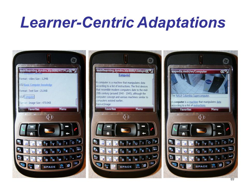 89 Learner-Centric Adaptations