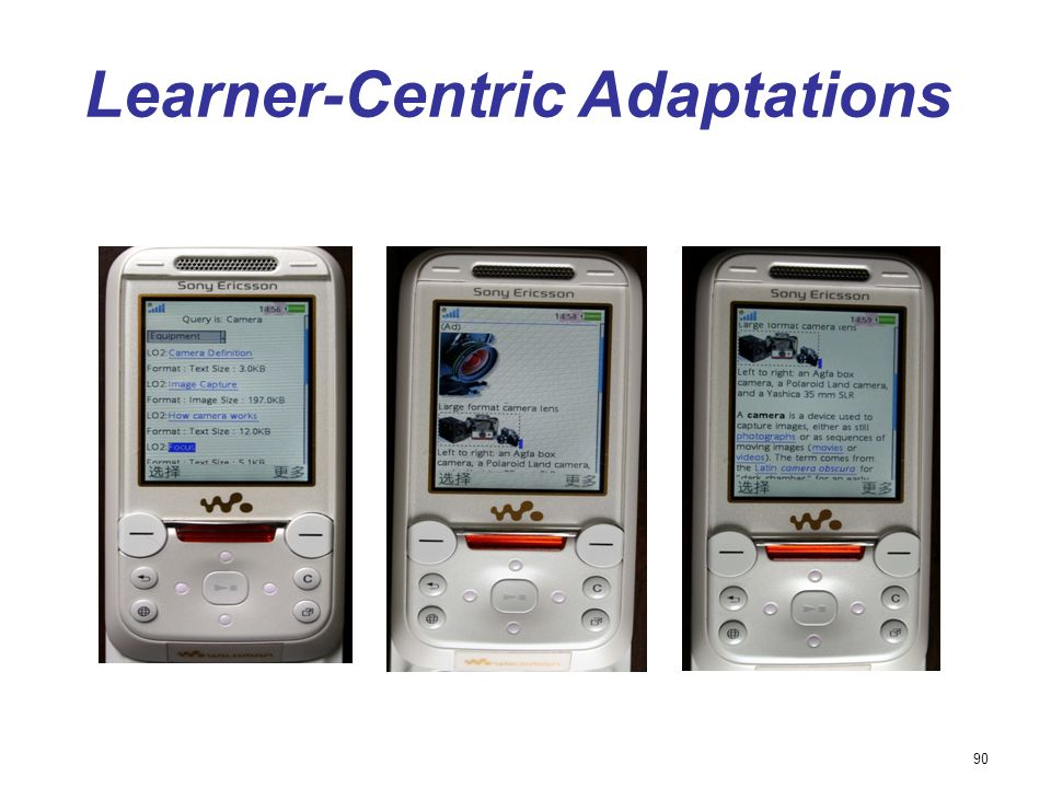 90 Learner-Centric Adaptations