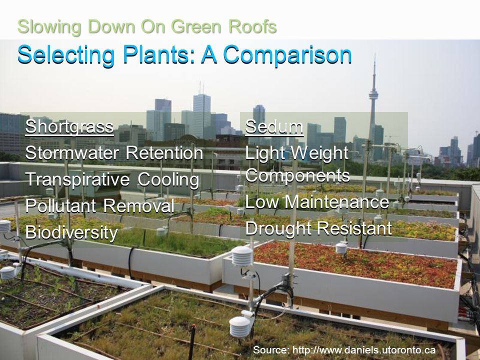 Engage. Innovate. Inspire. Slowing Down On Green Roofs Shortgrass Stormwater Retention Transpirative Cooling Pollutant Removal BiodiversitySedum Light