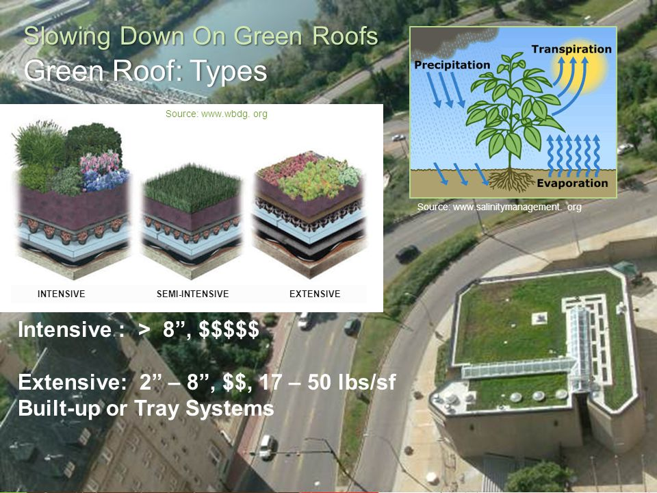 Engage. Innovate. Inspire. Slowing Down On Green Roofs Green Roof: TypesGreen Roof: Types Intensive : > 8, $$$$$ Extensive: 2 – 8, $$, 17 – 50 lbs/sf