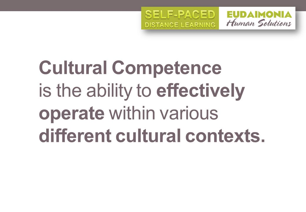 Cultural Competence is the ability to effectively operate within various different cultural contexts.