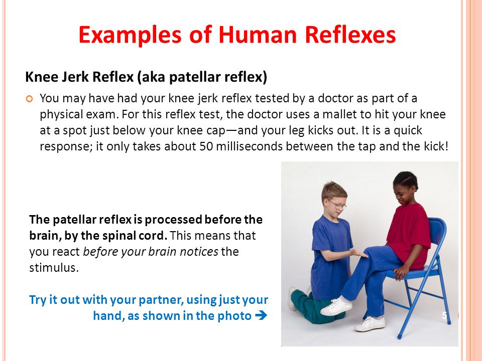 6 Doctors strike the patellar tendon with a tendon hammer just below the patella.