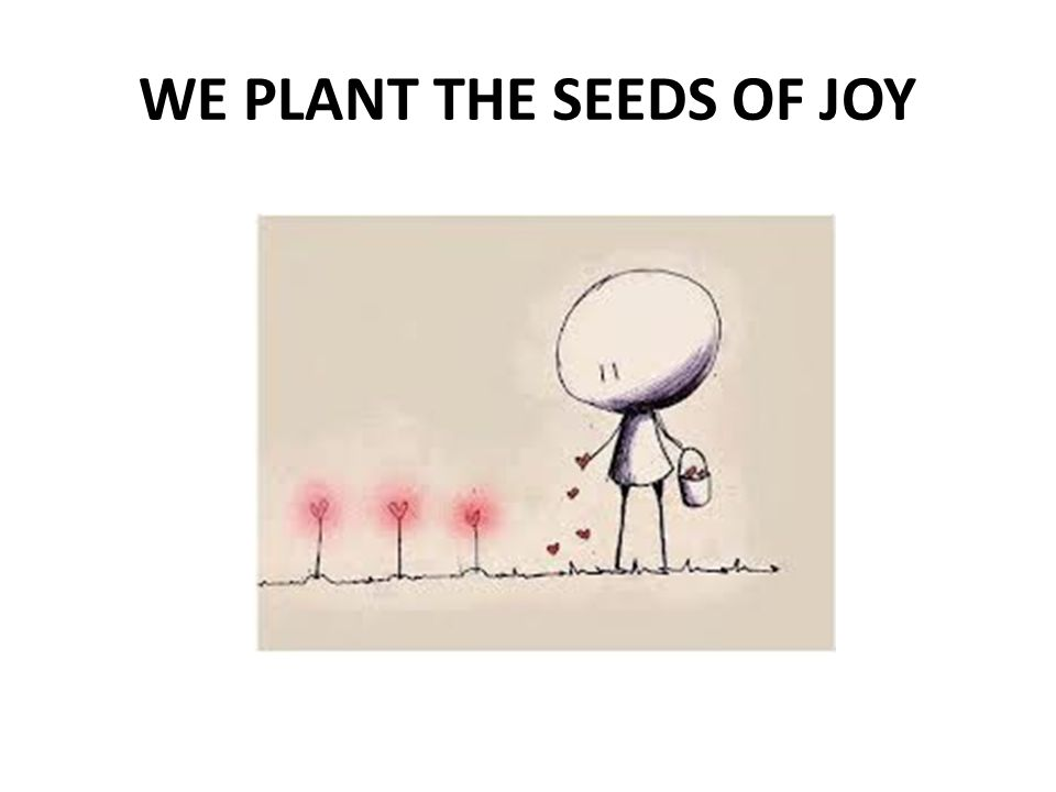 WE PLANT THE SEEDS OF JOY