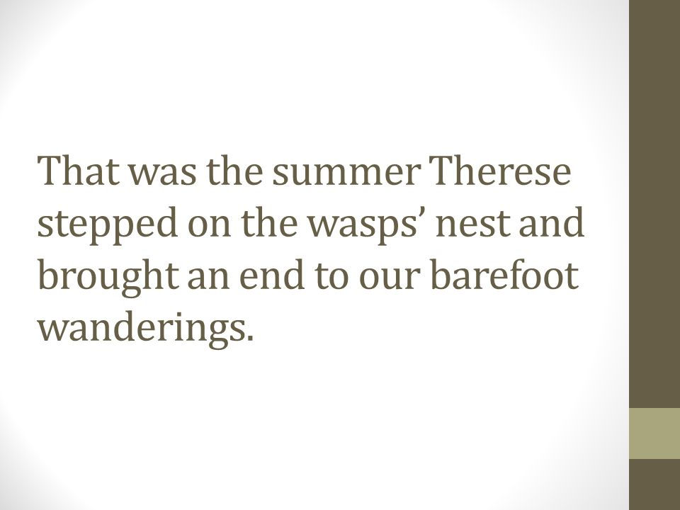 That was the summer Therese stepped on the wasps nest and brought an end to our barefoot wanderings.