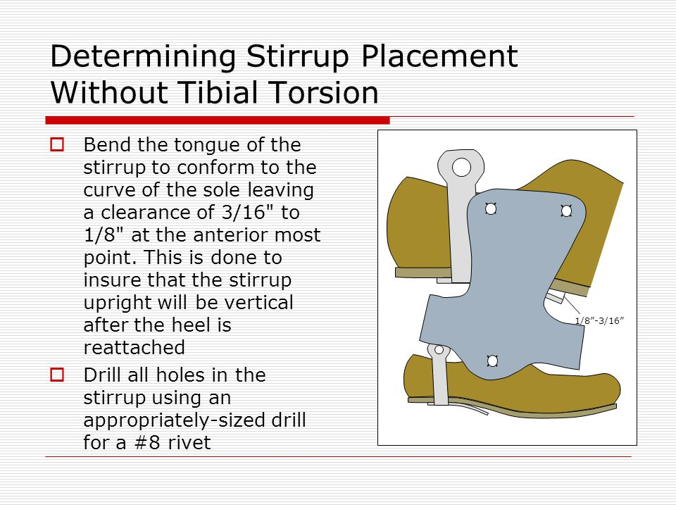 Determining Stirrup Placement Without Tibial Torsion Bend the tongue of the stirrup to conform to the curve of the sole leaving a clearance of 3/16