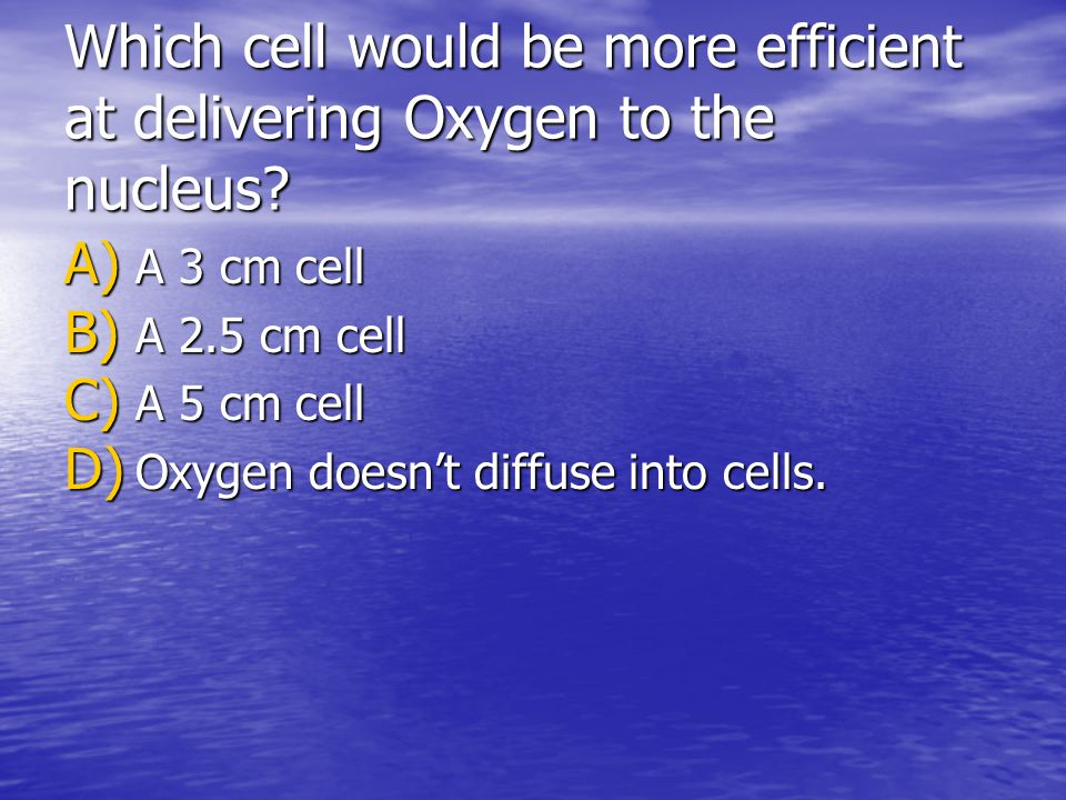 Which cell would be more efficient at delivering Oxygen to the nucleus? A) A 3 cm cell B) A 2.5 cm cell C) A 5 cm cell D) Oxygen doesnt diffuse into c